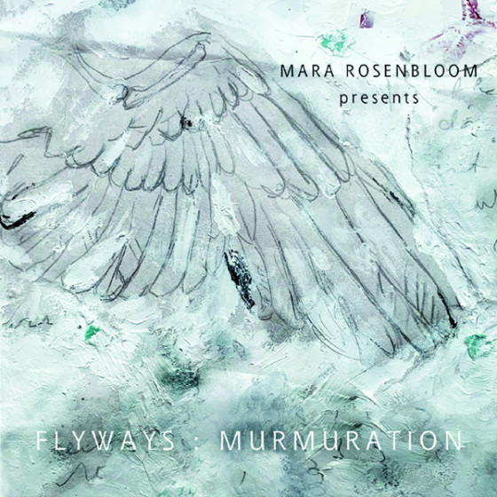 Flyways: Murmuration