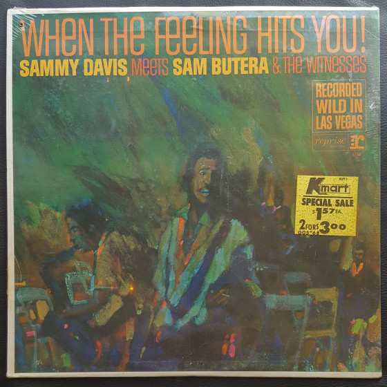When the Feeling Hits You! (Vinyl)